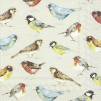Servietten 33x33 cm - THE BIRDS cream