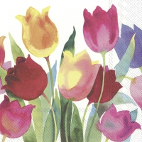 Servietten 33x33 cm - POWERFUL TULIPS