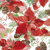 Servietten 33x33 cm - Christmas Poinsettia