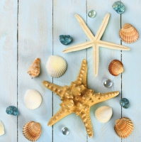 Servietten 33x33 cm - Sea Stars & Shells