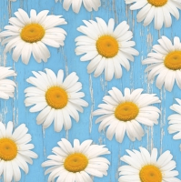 Servietten 33x33 cm - Daisies on Blue Background