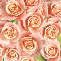 Servietten 33x33 cm - Salmon Roses Background