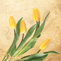 Servietten 33x33 cm - Bunch of Yellow Tulips