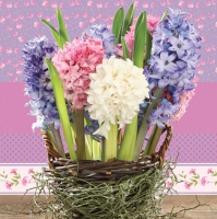 Servietten 33x33 cm - Hyacinths in a Basket
