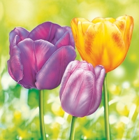 Servietten 33x33 cm - Three Garden Tulips