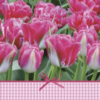 Lunch Servietten Pink Tulips Time