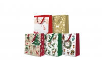 10 gift bags - Medium Mix 5 Design je 2 Stück