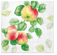 Servietten 33x33 cm - Garden Apple