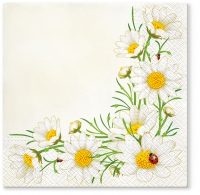 Servietten 33x33 cm - Bunch of Marguerites (cream)