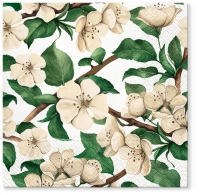 Servietten 33x33 cm - Apple Blossoms