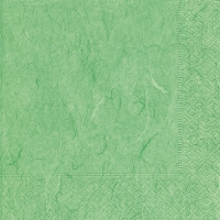 Servietten 25x25 cm - Pure mint green