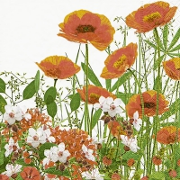 Servietten 33x33 cm - Red meadow