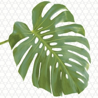 Servietten 33x33 cm - Monstera