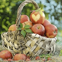 Lunch Servietten Apple basket