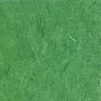 Servietten 33x33 cm - Pure fern green