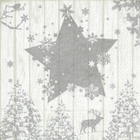 Servietten 33x33 cm - Winter print silver
