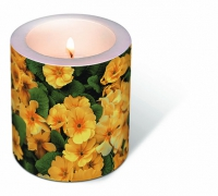Dekorkerze Candle Yellow prime roses