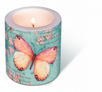 Dekorkerze Candle Butterfly poetry