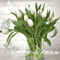 Servietten 33x33 cm - White dream