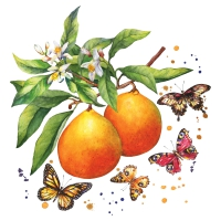 Servietten 33x33 cm - Fruity Butterflies