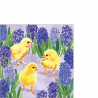 Napkins 25x25 cm - Chicks in Hyacinth