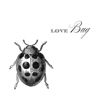 Lunch Servietten Love Bug