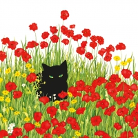 Lunch Servietten Black Cat Poppies