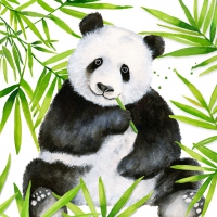 Servietten 33x33 cm - Tropical Panda