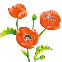 Servietten 33x33 cm - Poppies
