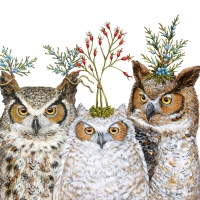 Napkins 33x33 cm - Holiday Hoot
