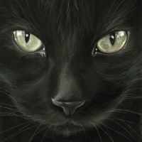 Servietten 33x33 cm - Black Cat