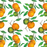 Napkins 33x33 cm - Beautiful Oranges