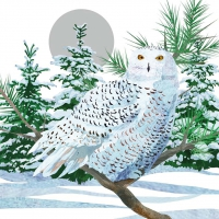 Cocktail Servietten Snow Owl