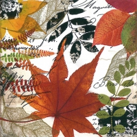 Servietten 33x33 cm - Herbst-Collage