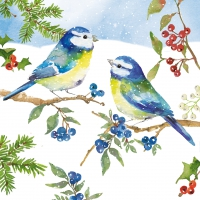Servietten 33x33 cm - Blue Birds