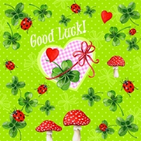 20 Servietten 33x33 cm - Good Luck