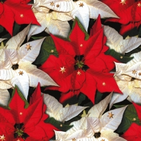Servietten 24x24 cm - Poinsettia with Stars