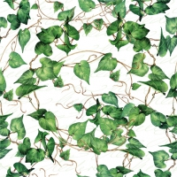 Servietten 24x24 cm - Green Ivy Branches