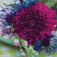 Lunch Servietten Dahlia & Cornflower