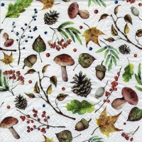 Servietten 33x33 cm - Autumn Forest white