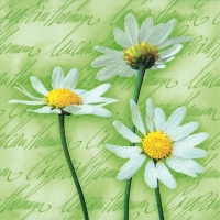 Lunch Servietten Blooming Daisies green