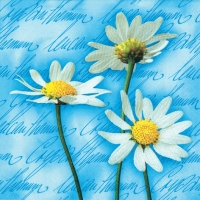 Lunch Servietten Blooming Daisies blue
