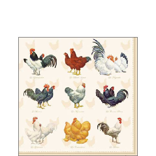 20 Servietten - 25 x 25 cm WYANDOTTE CREAM,  Tiere -  Sonstige,  Tiere - Huhn / Hahn,  Everyday,  cocktail servietten,  Hühner