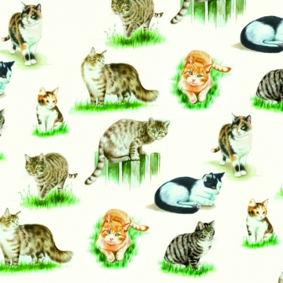 20 Servietten - 33 x 33 cm LOVELY CATS,  Tiere - Katzen,  Everyday,  lunchservietten