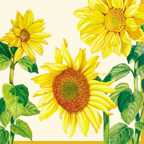20 Servietten - 33 x 33 cm HELIANTHUS CREAM,  Blumen - Sonnenblumen,  Everyday,  lunchservietten