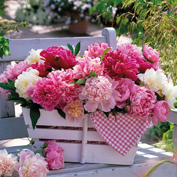 Lunch Servietten Peonies In Basket