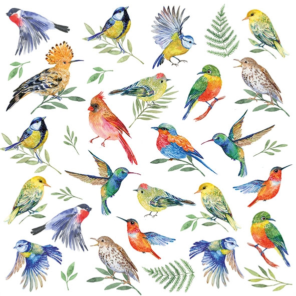 Servietten 33x33 cm - Birds Votes