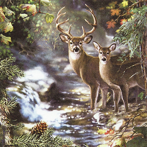 Lunch Servietten Deers on a Creek