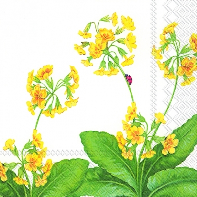 Cocktail Servietten PRIMULA VERIS
