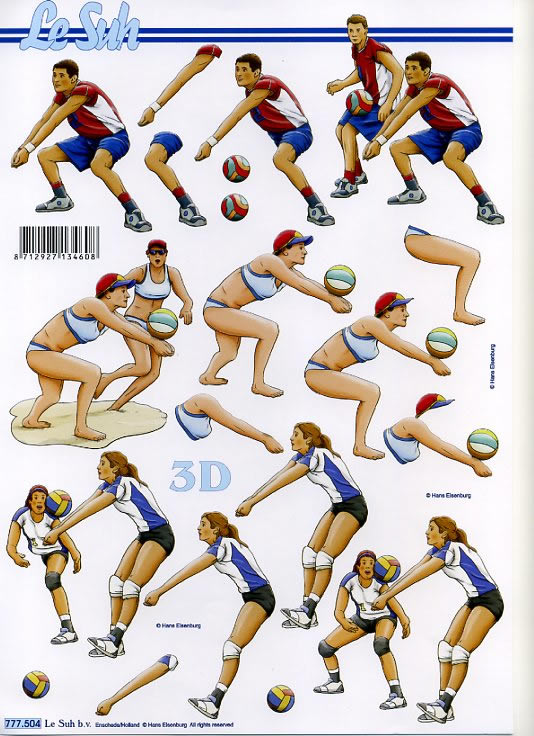 Le Suh b.v.,  Le Suh,  3D Bogen,  volleyball